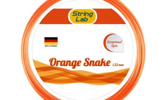 stringlab-orange-snake-123-cover