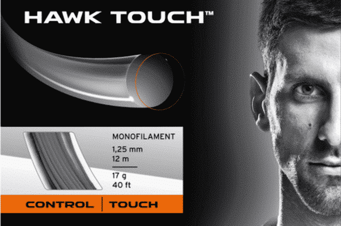 head-hawk-touch
